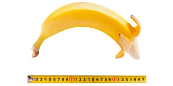 Male Perf agrandissement du pénis