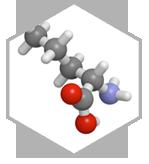 arginine composant activforte